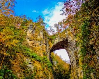 Natural Bridge Virginia Fine Art Print - Nature, Botanical, Fall, Trees, Woods, Nursery Decor, Home Decor, Zen, Gift