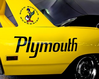 Plymouth Road Runner Superbird Fine Art Print or Canvas Gallery Wrap