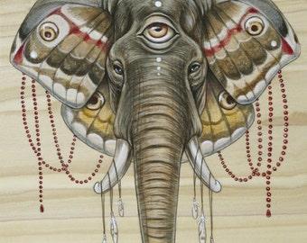 Flight of the Elephant PRINT