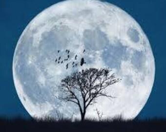 Full Moon Tarot Card Reading