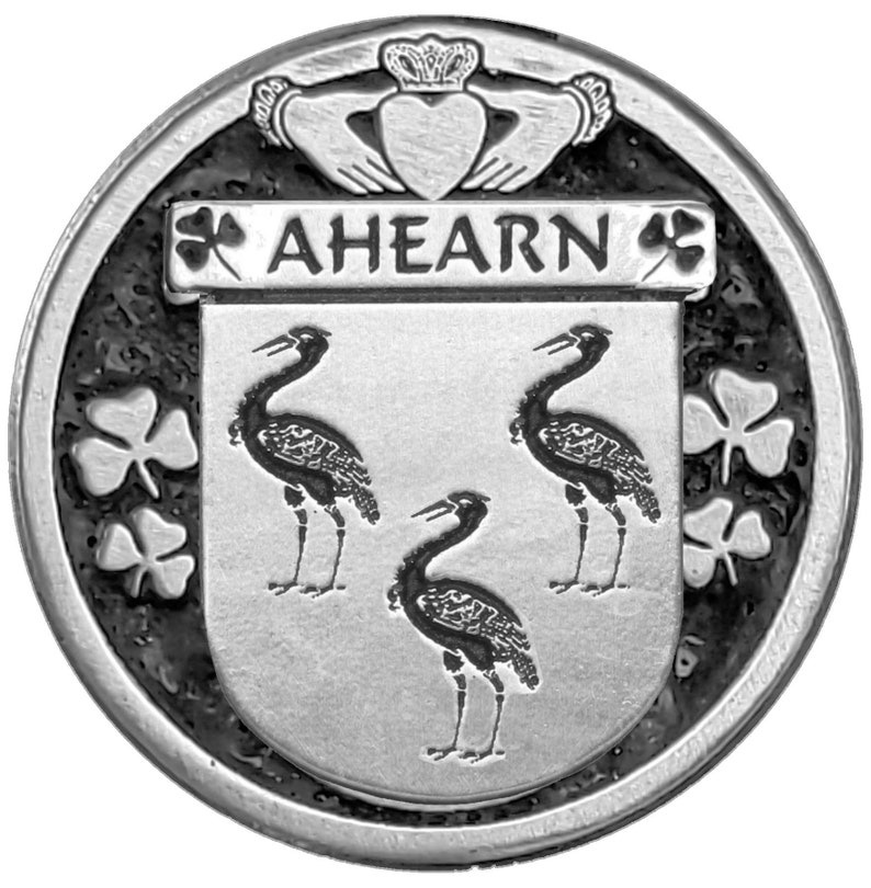 Ahearn Irish Coat of Arms Art Nouveau Drop Pendant
