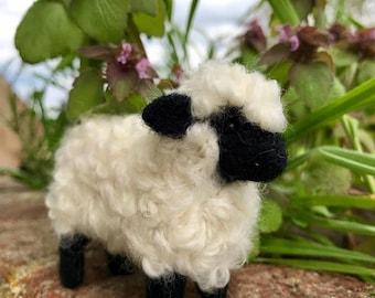 Curly Sheep Needle Felting Kit - Sale!