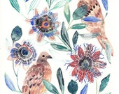 Two Mourning doves and Passion Flowers - Larger Archival Print