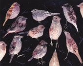 """Sparrows at Night - 11"""" x 14"""" Archival Print"""