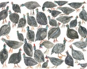 Guinea Fowl Gathering - Archival Print