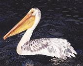 "Pelican at Night- 8"" x 10"" Archival Print"