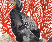 """Cormorant and Red Coral - 11"""" x 14"""" Archival Print"""