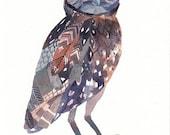 Burrowing Owl - Archival Print