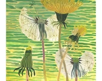 "Dandelion and Marsh - 8.5"" x 11"" Archival Print -"