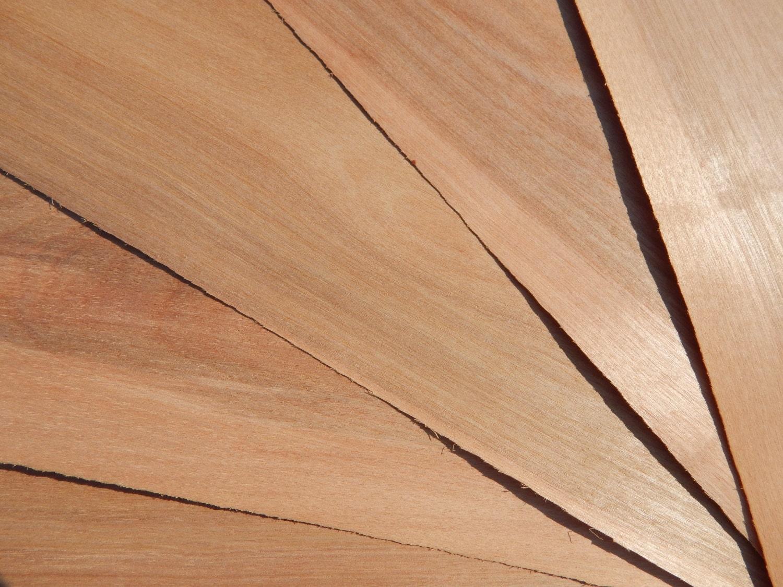 Full Birch Veneer Sheet, Reclaimed wood veneer, Real Wood Veneer, Thin  Birch Veneer Full Sheet