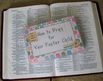How to Pray for Your Foster Child, Laminated Prayer Book, Spiral-Bound