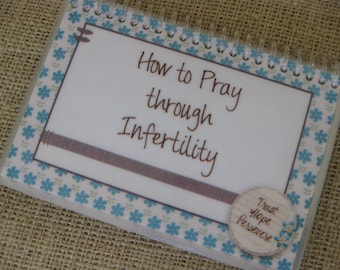 How to Pray Through Infertility, Spiral-Bound, Laminated Bible Verse Cards