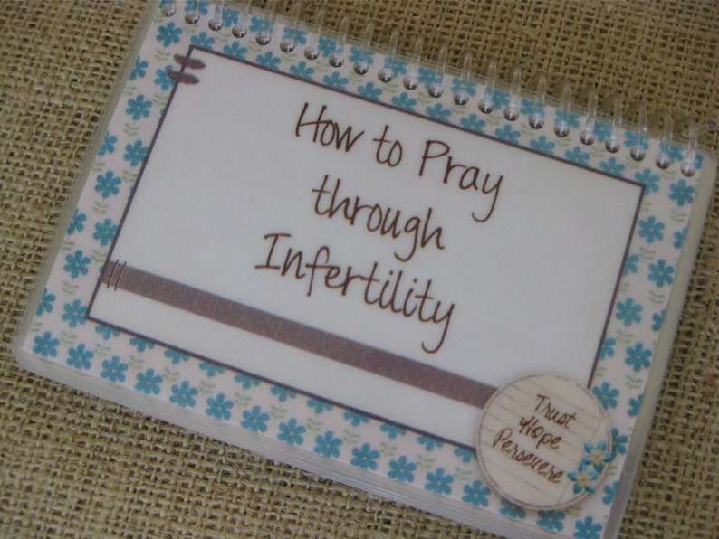 How to Pray Through Infertility Spiral-Bound Laminated Bible image 0