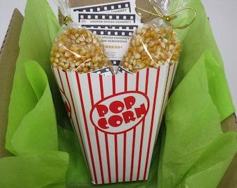 Popcorn 20 oz, Popcorn Gift Set, Popcorn Kit, Popcorn Mix, Popcorn Season, 4th of July, Gourmet Popcorn, NO Salt, NONGMO