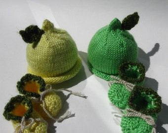 Lemon or Lime VegetaBaby Set