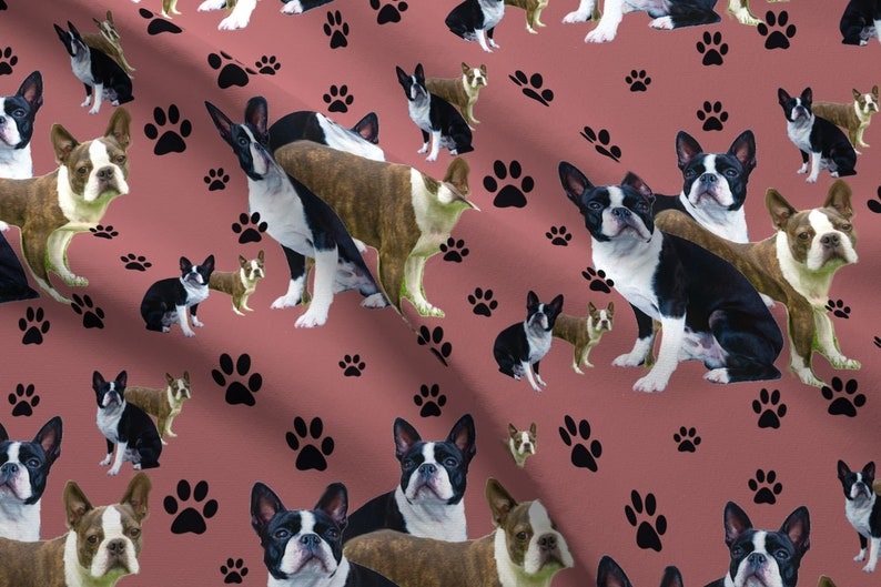 Boston Terrier Puppy Fabric - Boston Terrier And Pawprints By Dogdaze -  Boston T... Boston Terrier Puppy Fabric - Boston Terrier And Pawprints By  Dogdaze ... 409ca56ed