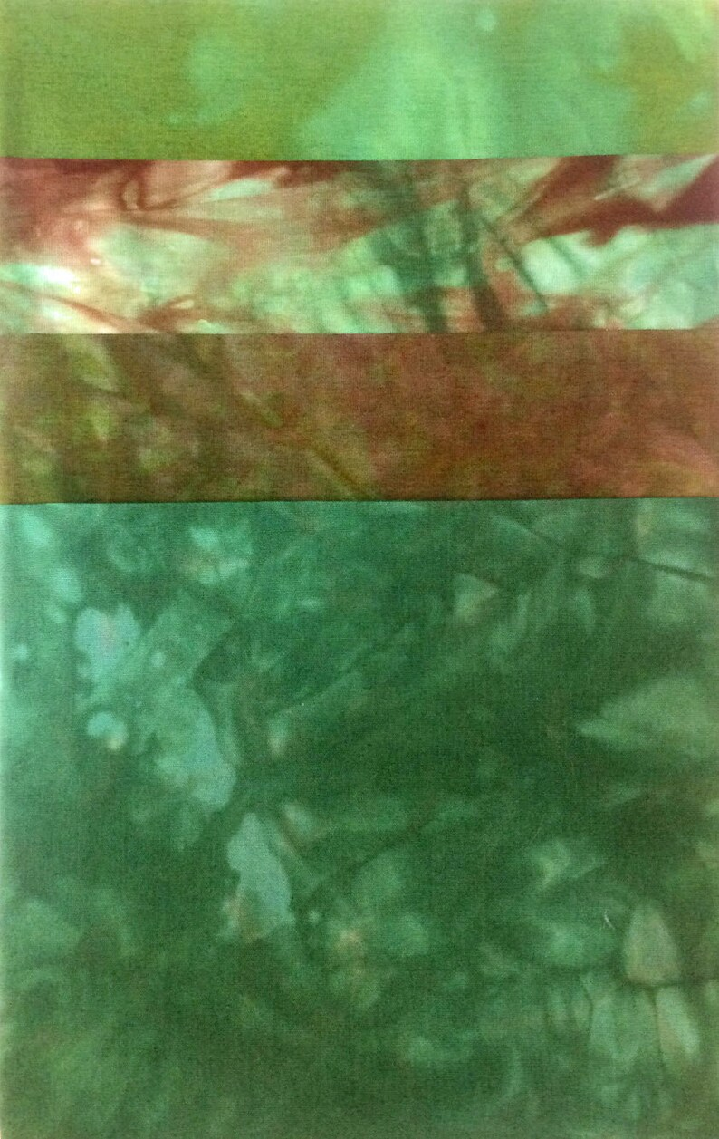 Colour Gradations  Undersea Garden  Hand Dyed Pack for Quilt image 0