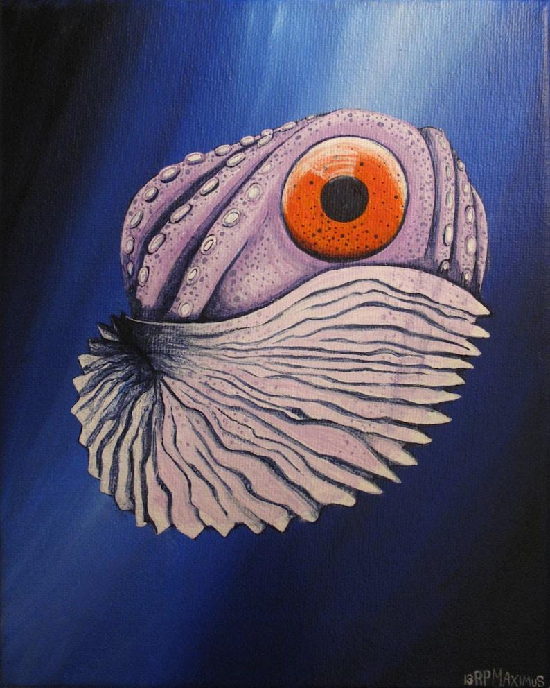 Paper Nautilus 8x10 photo print image 0