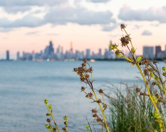 Photography of the Chicago Skyline - Prarie Sky, Flowers, sunset, wall art print, color, architectural, lake michigan  Chicago photograph