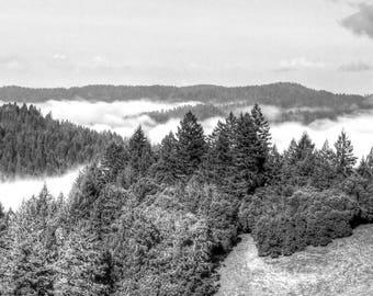 California Rolling Mountains w/ early morning fog - Fine Art Print