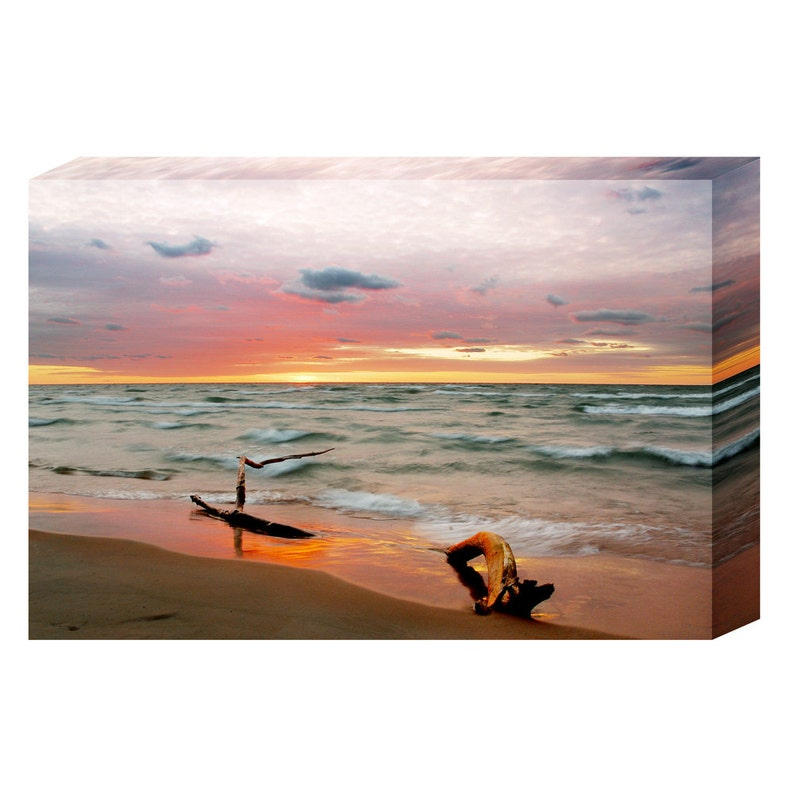 Print Your Own Canvas or Paper Print image 0