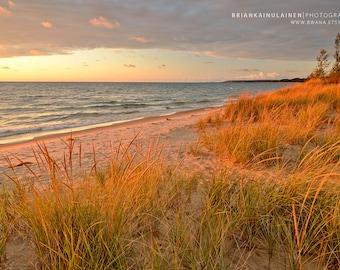 Pentwater Warm Grass - Michigan Photography