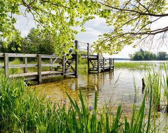 Spring Time at the Bridge - Ludington State Park - Michigan Photography - Stock Photography