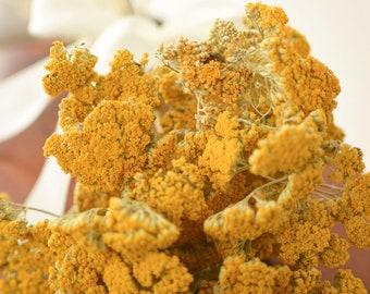 Dried Yarrow Bunch, dried yarrow, golden flowers, gold flowers, yellow dried flowers, yellow wedding flowers