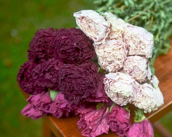 Dried peony bunch | Dried peonies for weddings | dried flowers for vase | dried peony bouquet | rose substitute | peonies | pink peony
