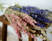 Bunch of larkspur, purple larkspur, pink larkspur, white larkspur, blue dried flowers, white dried flowers, pink dried flowers
