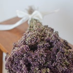 Greek Oregano, smudge herbs, smudge supplies, smudge herb, dried oregano,  dried herbs, purple dried flowers,  wedding herbs, frgrant herbs