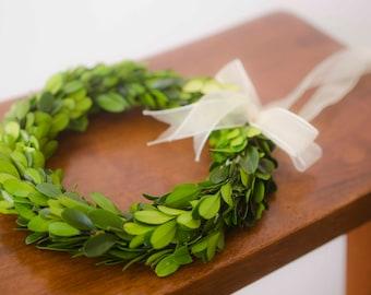 READY TO SHIP! Preserved Mini Boxwood Wreath, Simple Spring Wreath, Spring wreath, boxwood wreath, small boxwood wreath