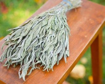 Dried sage bunch, sage dried herbs, fragrant dried sage, preserved sage