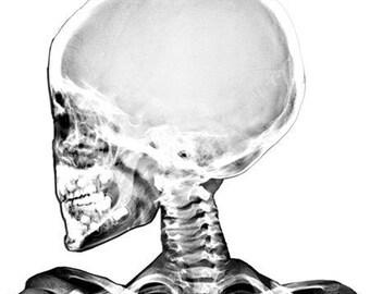X Ray Clipart Etsy