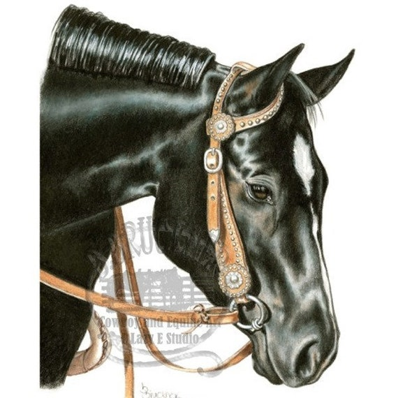Black Quarter Horse Mare Portrait In Colored Pencil Etsy