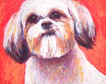 Shih Tzu Painting, 8 x 8 Original Oil Pastel of Dog by Bethany Bryant