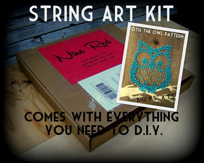 DIY String Art KIT  Otis the Owl  All supplies included image 0