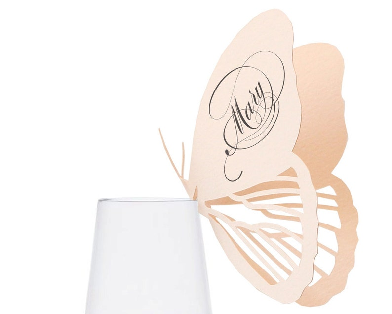 Butterfly Place Cards  blush pink wedding champagne glass image 0