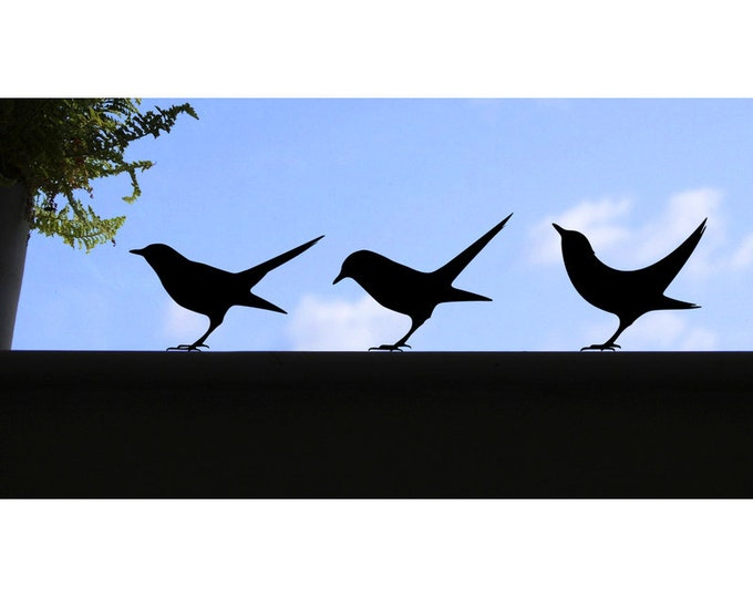 Blackbird window stickers, birdy wall decals