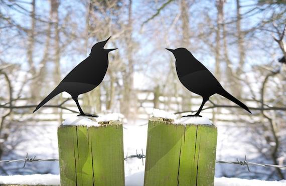 Angry Birds Garden Ornament Yard Art for Bird Lovers