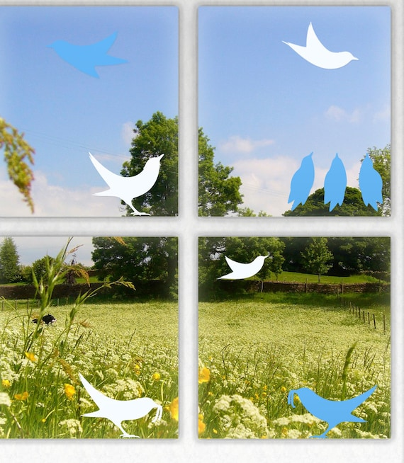 Blackbird Window Stickers, Bird Window Protectors
