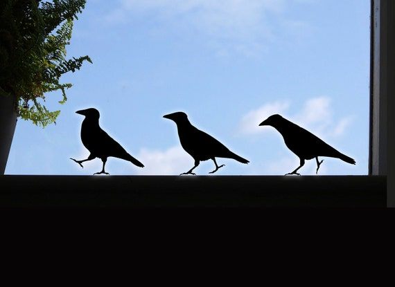 Crow Window Stickers, 3 Raven Wall Stickers, Bird Decals