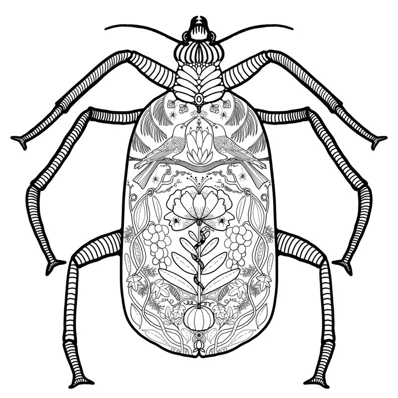 Adult Coloring page  download  beetle  floral beetle  busy image 0
