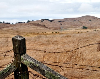 Landscape Photography-Field and Fence