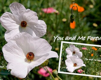 Fine Art Photography-You and Me Forever