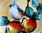 Lenox Dinner Plate Splendor Winter Greetings Everyday Tartan Tufted Titmouse Collector Plate Bird Apple Tree Flower Plaid Rare