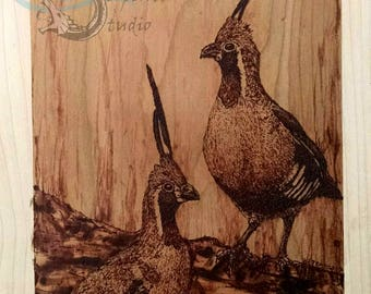Mountain Quail Pyrography - wood burning on cherry panel, maple border, hand drawn, ready to hang, original artwork, 8x10 inches