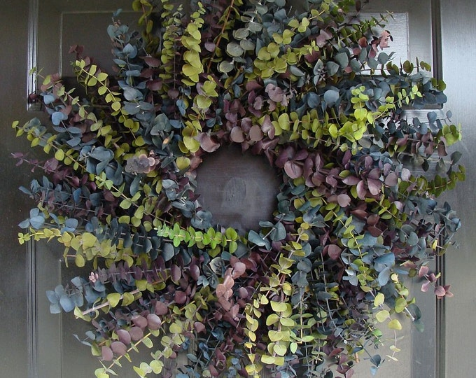 Summer Cool Eucalyptus Wreath- Eucalyptus Wreath- 16, 20 or 24 inch Dried Floral Wreath