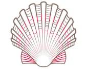 Scallop Shell PDF Hand Embroidery Pattern