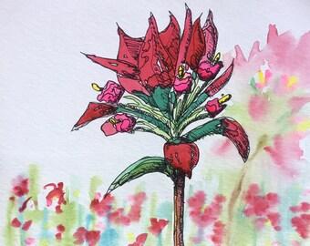 Indian Paintbrush 8x10 watercolor floral painting by Nan Henke, original
